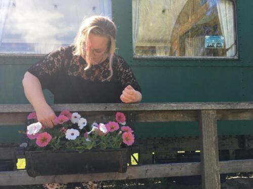 Sophie plockar med blommor
